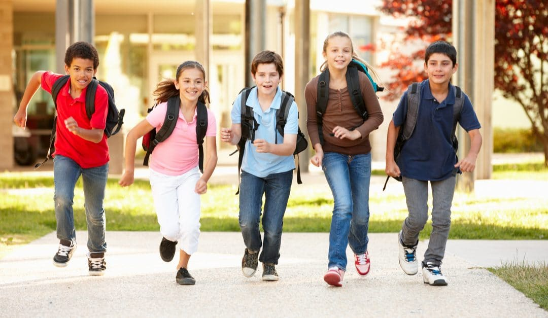Summer School Transition Programme